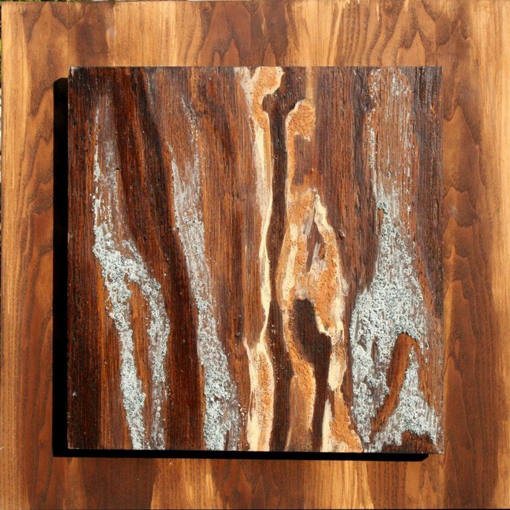 terre e resine naturali su tavola - 45 x 45 su 55 x 55 cm - 2001